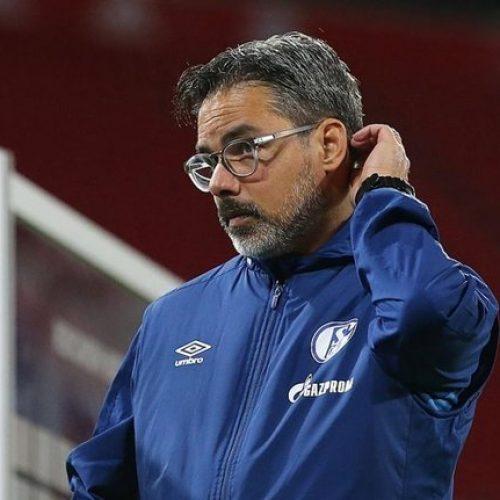 Bundesliga Schalke 04 Wagner, esonerato il tecnico statunitense