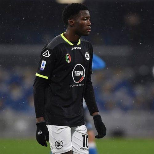 """Spezia, parla il Ds: """"Agoumé? Purtroppo è dell'Inter, ma è sorprendente"""""""